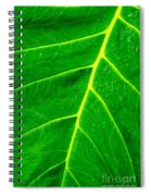 Veins Of Green Spiral Notebook