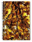 Veins Of Life  Spiral Notebook