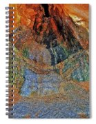 Veins Of The Earth Spiral Notebook