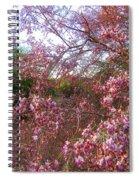 Vekol Wash Desert Ironwood In Bloom Spiral Notebook