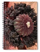 Velvet Core On Pink Spiral Notebook