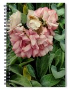 Velvet In Pink And Green Spiral Notebook