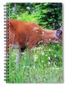 Velvet Nubs Spiral Notebook