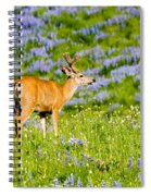 Velvet On Lupine Spiral Notebook