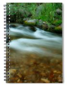 Velvet River Spiral Notebook
