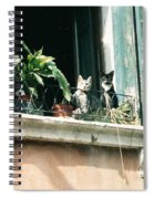 Venetian Cats Spiral Notebook