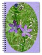 Venus Looking Glass - Triodanis Perfoliata Spiral Notebook