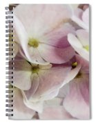Verging On Violet Spiral Notebook