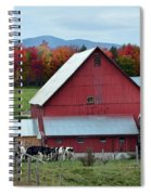 Vermont Cows At The Barn Spiral Notebook