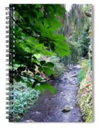 Vernon Creek Spiral Notebook