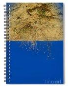 Vertigo II Spiral Notebook