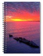 Very Berry Spiral Notebook