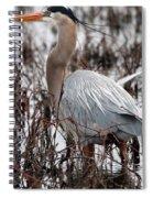 Very Handsome Heron  2845 Spiral Notebook