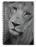 Very Sad Lion, Cry For Africa Spiral Notebook