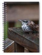 Very Wet Wren Spiral Notebook