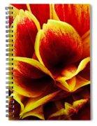Vibrant Dahlia Petals Spiral Notebook