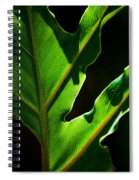 Vibrant Green Spiral Notebook