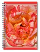 Vibrant Two Toned Rose With Design Spiral Notebook