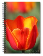 Vibrantly Yours Spiral Notebook