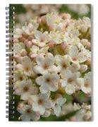 Haw Spiral Notebook