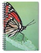 Viceroy Spiral Notebook