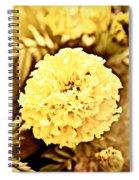 Victorian Spring Spiral Notebook