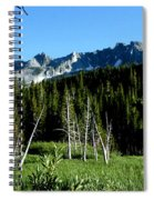 View From Lake Mary Spiral Notebook