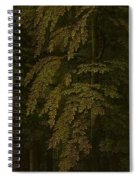 View In A Forest  Outer Right Wing Of A Triptych  Gerard David  C  1505   C  1515 Spiral Notebook