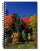 View In The Appalachian Mountains Spiral Notebook