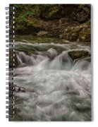 View In Vintgar Gorge #2 - Slovenia Spiral Notebook