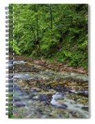 View In Vintgar Gorge - Slovenia Spiral Notebook
