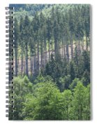 View Of The Mixed Forest Spiral Notebook