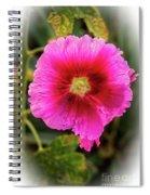 Vigenetted Hollyhock Spiral Notebook