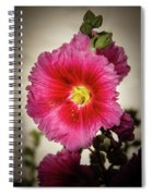 Vignetted Hollyhock Spiral Notebook