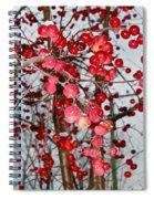 Vignettes - Apples Cider Spiral Notebook