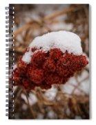Vignettes - First Snow 1 Spiral Notebook