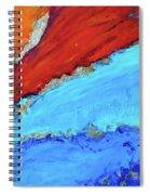 Viiii Spiral Notebook