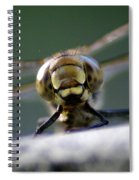 Vince The Dragonfly Spiral Notebook
