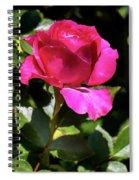Vincent Red Rose Spiral Notebook