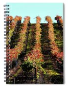 Vineyard 27 Spiral Notebook