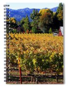 Vineyard 4 Spiral Notebook