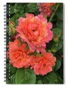 Vineyard Flowers  Spiral Notebook