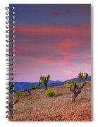 Vineyards At Sunset In Spain Spiral Notebook