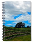 Vineyards In Paso Robles Spiral Notebook