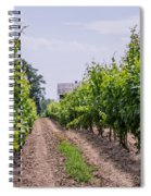 Vineyards Of Old Color Horizontal Spiral Notebook