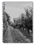 Vineyards Of Old Horizontal Bw Spiral Notebook
