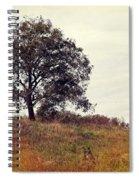 Vintage Autumn Spiral Notebook