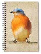 Vintage Bluebird Spiral Notebook