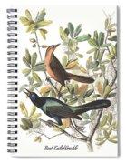 Vintage Boat-tailed Grackles Audubon Spiral Notebook