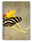 Vintage Butterfly Spiral Notebook